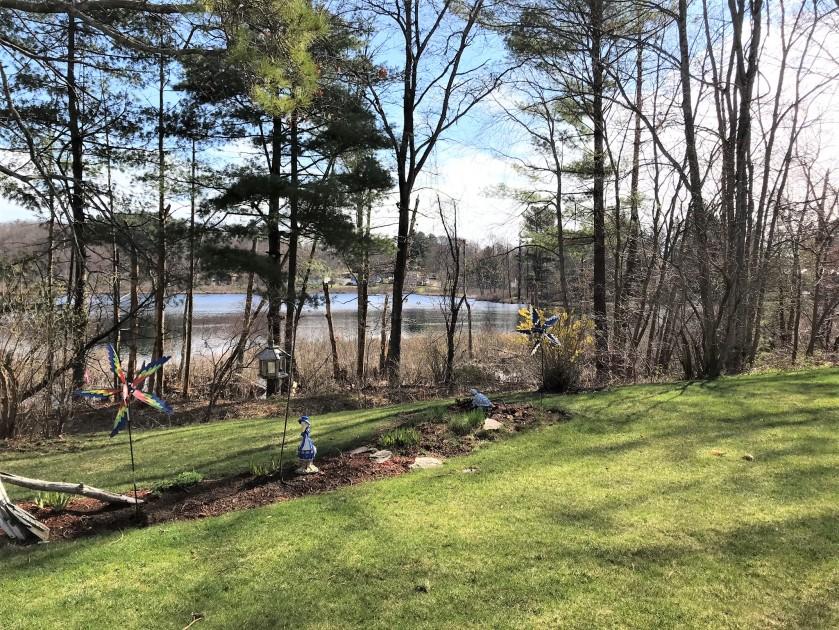 View 5 pond